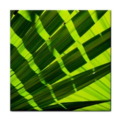 Frond Leaves Tropical Nature Plant Face Towel
