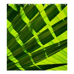 Frond Leaves Tropical Nature Plant Shower Curtain 66  X 72  (large)
