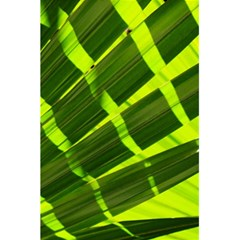 Frond Leaves Tropical Nature Plant 5 5  X 8 5  Notebooks