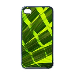 Frond Leaves Tropical Nature Plant Apple Iphone 4 Case (black)