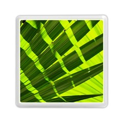 Frond Leaves Tropical Nature Plant Memory Card Reader (square)