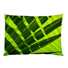 Frond Leaves Tropical Nature Plant Pillow Case (two Sides)