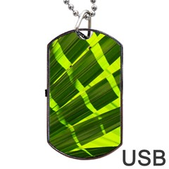 Frond Leaves Tropical Nature Plant Dog Tag Usb Flash (one Side)