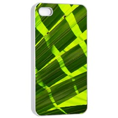 Frond Leaves Tropical Nature Plant Apple Iphone 4/4s Seamless Case (white)
