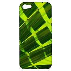 Frond Leaves Tropical Nature Plant Apple Iphone 5 Hardshell Case
