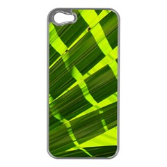 Frond Leaves Tropical Nature Plant Apple Iphone 5 Case (silver)