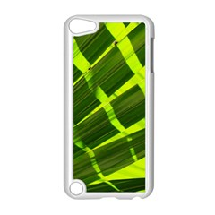 Frond Leaves Tropical Nature Plant Apple Ipod Touch 5 Case (white)