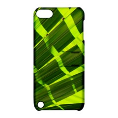 Frond Leaves Tropical Nature Plant Apple Ipod Touch 5 Hardshell Case With Stand