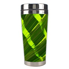 Frond Leaves Tropical Nature Plant Stainless Steel Travel Tumblers