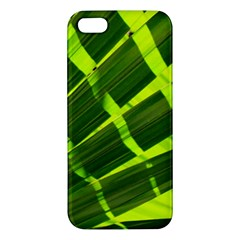 Frond Leaves Tropical Nature Plant Iphone 5s/ Se Premium Hardshell Case