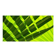 Frond Leaves Tropical Nature Plant Satin Shawl