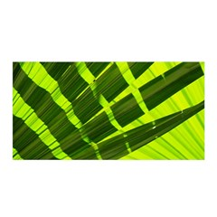 Frond Leaves Tropical Nature Plant Satin Wrap