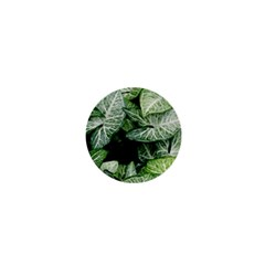 Green Leaves Nature Pattern Plant 1  Mini Buttons