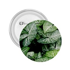 Green Leaves Nature Pattern Plant 2 25  Buttons