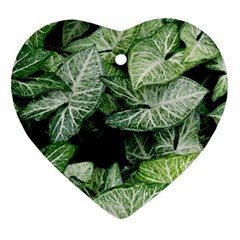 Green Leaves Nature Pattern Plant Ornament (heart)