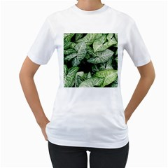 Green Leaves Nature Pattern Plant Women s T Shirt (white) (two Sided)