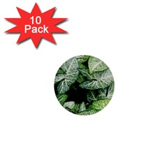 Green Leaves Nature Pattern Plant 1  Mini Buttons (10 Pack)