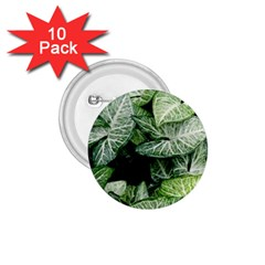 Green Leaves Nature Pattern Plant 1 75  Buttons (10 Pack)