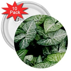 Green Leaves Nature Pattern Plant 3  Buttons (10 Pack)
