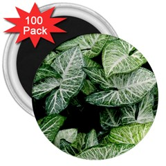 Green Leaves Nature Pattern Plant 3  Magnets (100 Pack)