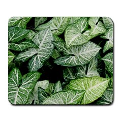 Green Leaves Nature Pattern Plant Large Mousepads