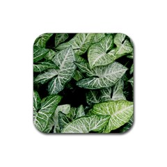 Green Leaves Nature Pattern Plant Rubber Square Coaster (4 Pack)