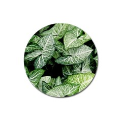 Green Leaves Nature Pattern Plant Magnet 3  (round)