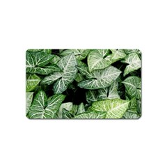 Green Leaves Nature Pattern Plant Magnet (name Card)