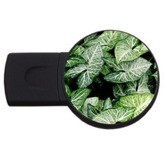 Green Leaves Nature Pattern Plant Usb Flash Drive Round (2 Gb)