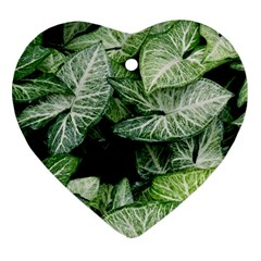 Green Leaves Nature Pattern Plant Heart Ornament (two Sides)