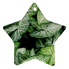 Green Leaves Nature Pattern Plant Star Ornament (two Sides)