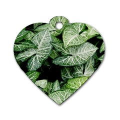 Green Leaves Nature Pattern Plant Dog Tag Heart (two Sides)