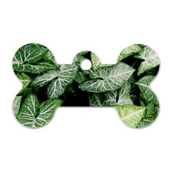 Green Leaves Nature Pattern Plant Dog Tag Bone (two Sides)