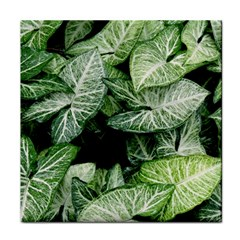 Green Leaves Nature Pattern Plant Face Towel