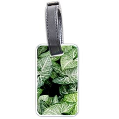 Green Leaves Nature Pattern Plant Luggage Tags (one Side)