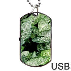 Green Leaves Nature Pattern Plant Dog Tag Usb Flash (two Sides)