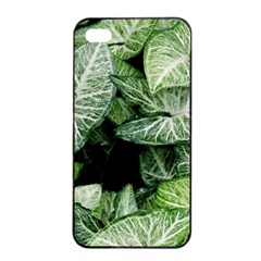 Green Leaves Nature Pattern Plant Apple Iphone 4/4s Seamless Case (black)