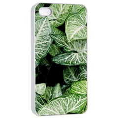 Green Leaves Nature Pattern Plant Apple Iphone 4/4s Seamless Case (white)