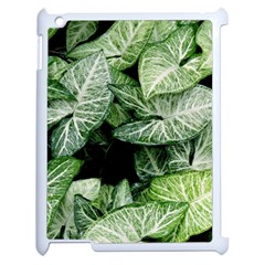 Green Leaves Nature Pattern Plant Apple Ipad 2 Case (white)