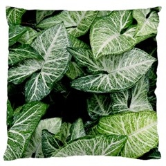 Green Leaves Nature Pattern Plant Large Cushion Case (two Sides)