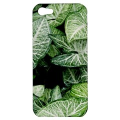 Green Leaves Nature Pattern Plant Apple Iphone 5 Hardshell Case