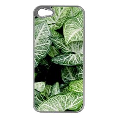 Green Leaves Nature Pattern Plant Apple Iphone 5 Case (silver)