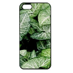 Green Leaves Nature Pattern Plant Apple Iphone 5 Seamless Case (black)