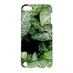 Green Leaves Nature Pattern Plant Apple Ipod Touch 5 Hardshell Case