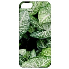 Green Leaves Nature Pattern Plant Apple Iphone 5 Classic Hardshell Case