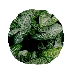 Green Leaves Nature Pattern Plant Standard 15  Premium Round Cushions