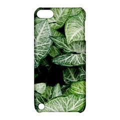 Green Leaves Nature Pattern Plant Apple Ipod Touch 5 Hardshell Case With Stand