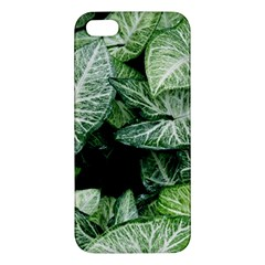 Green Leaves Nature Pattern Plant Iphone 5s/ Se Premium Hardshell Case