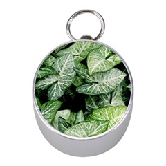 Green Leaves Nature Pattern Plant Mini Silver Compasses