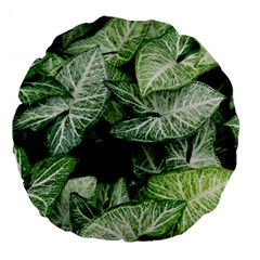 Green Leaves Nature Pattern Plant Large 18  Premium Flano Round Cushions